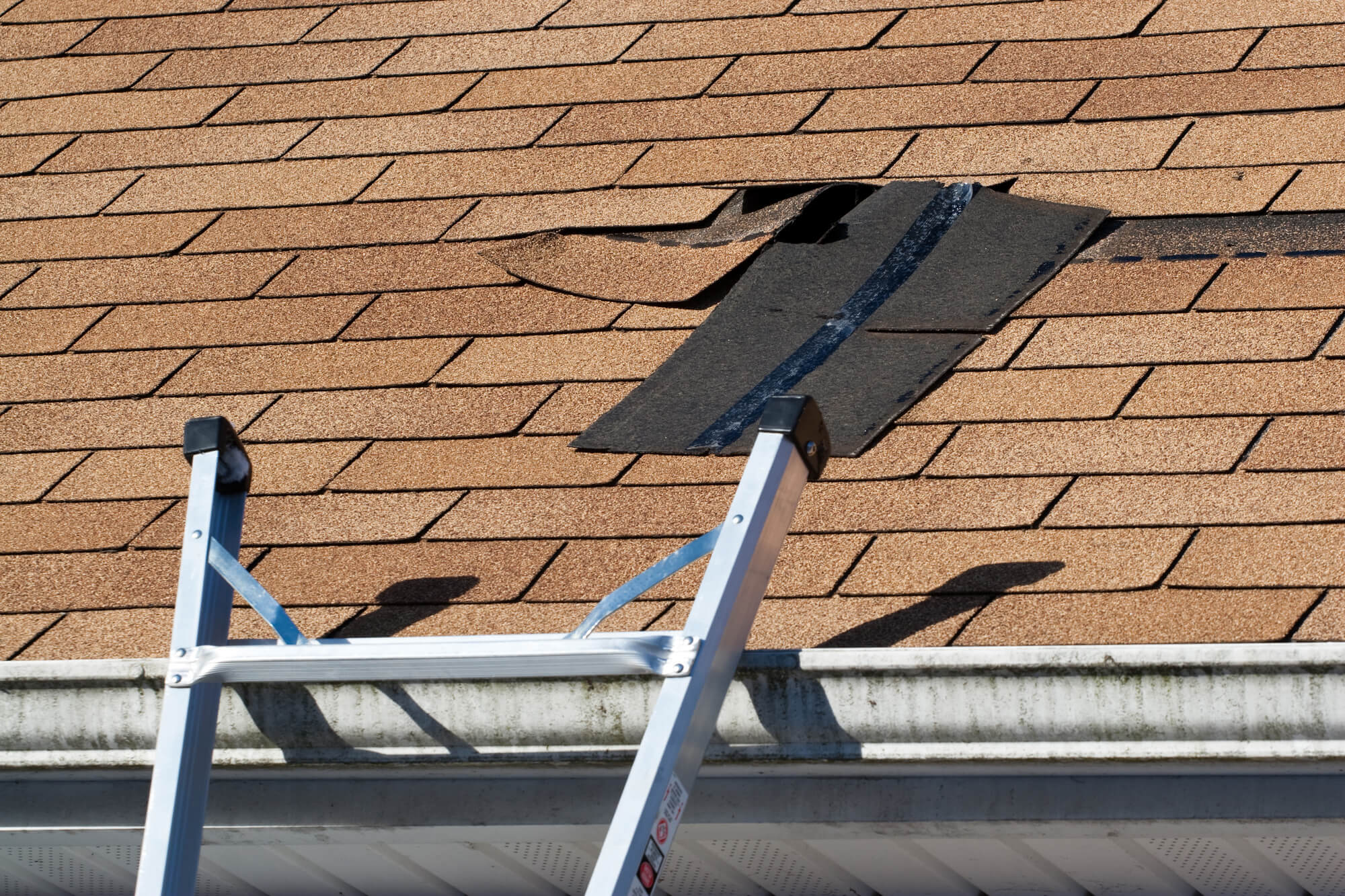 Damaged Roof Shingles Repair - Concord Roofing & Construction