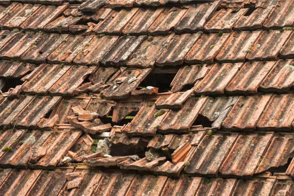 Broken Shingles open to the elements